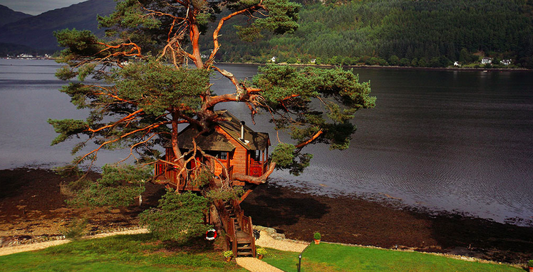 treehouse_event_venue