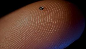 tiny RFID chip