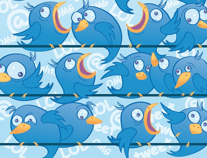 too many twitter follower birds, Noodle Live spring clean